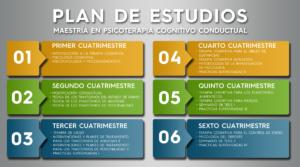 Plan de estudios - Centro de Psicoterapia Cognitiva